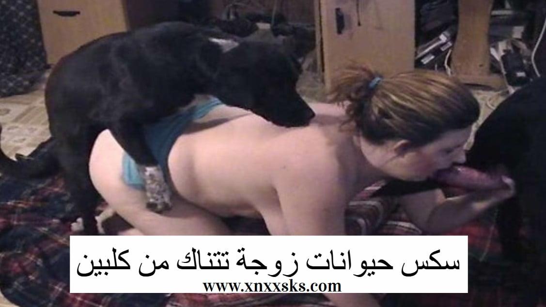 سكس حيوانات زوجة تتناك من كلبين gonzo xxx – xnxxsks